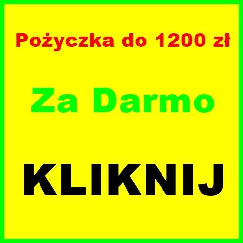 Udzielę Pożyczki Dziś  do 1200 zł za Darmo