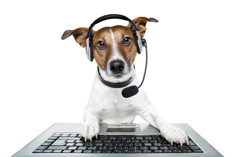 Angielski przez Internet - kursy i korepetycje online