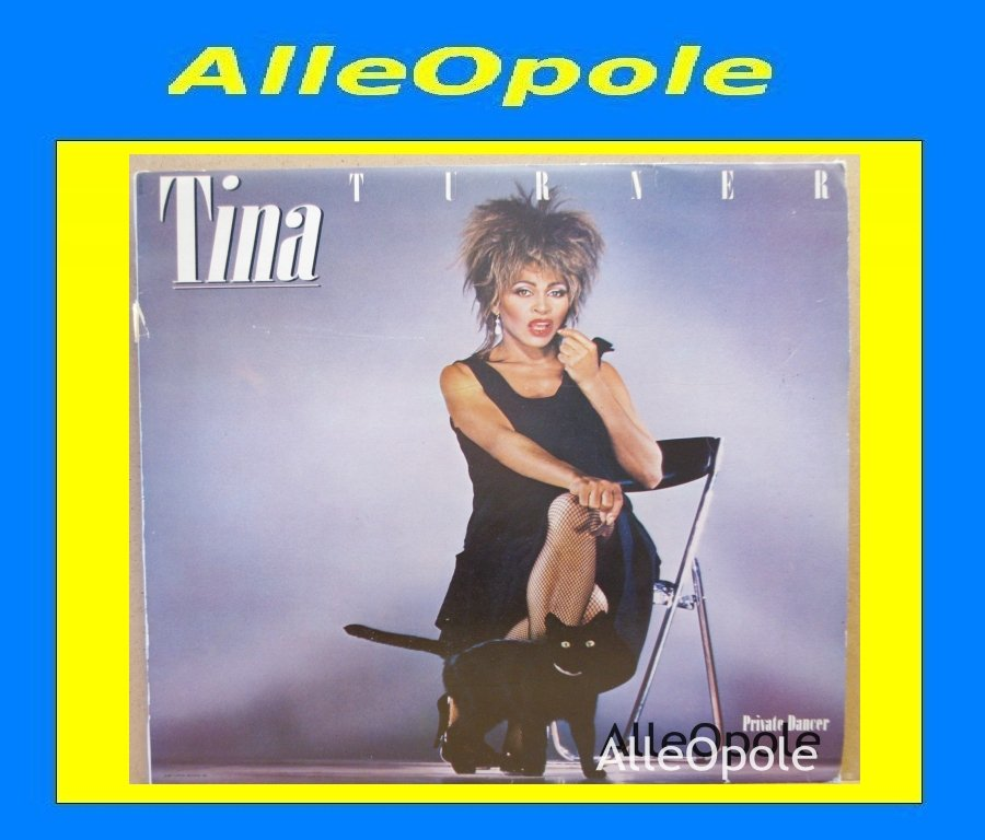 TINA TURNER - Private Dancer  LP Opole 0235
