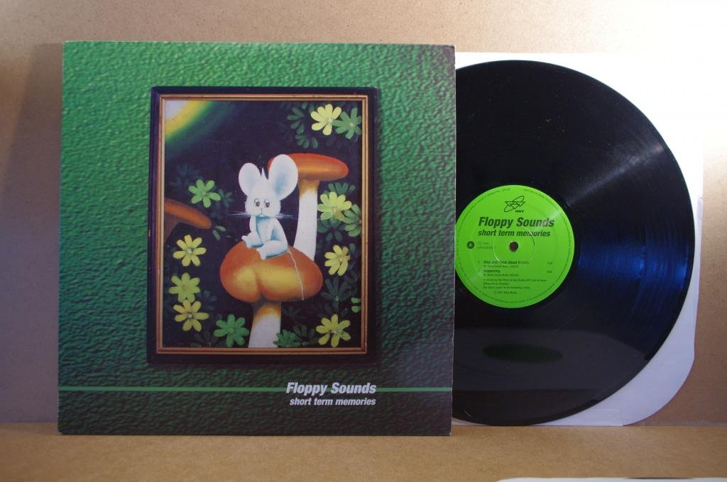 Floppy Sounds- Short Term Memories LP Opole 0317