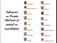Ogłoszenia na Portalu AlleOpole.pl podział na województwa