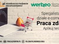 Specjalista w dziale e-commerce - praca zdalna