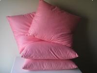 Poduszka - jasiek 45 x 40 z ręcznie dartego pierza i puchu 4 szt