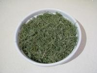 Skrzyp polny suszony z łąk