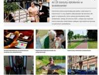 Portal informacyjny Katowice