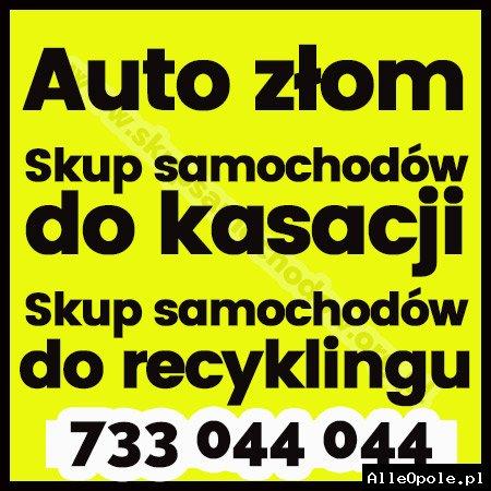 Auto złom ,Skup samochodów do kasacji ,Skup samochodów do recyklingu