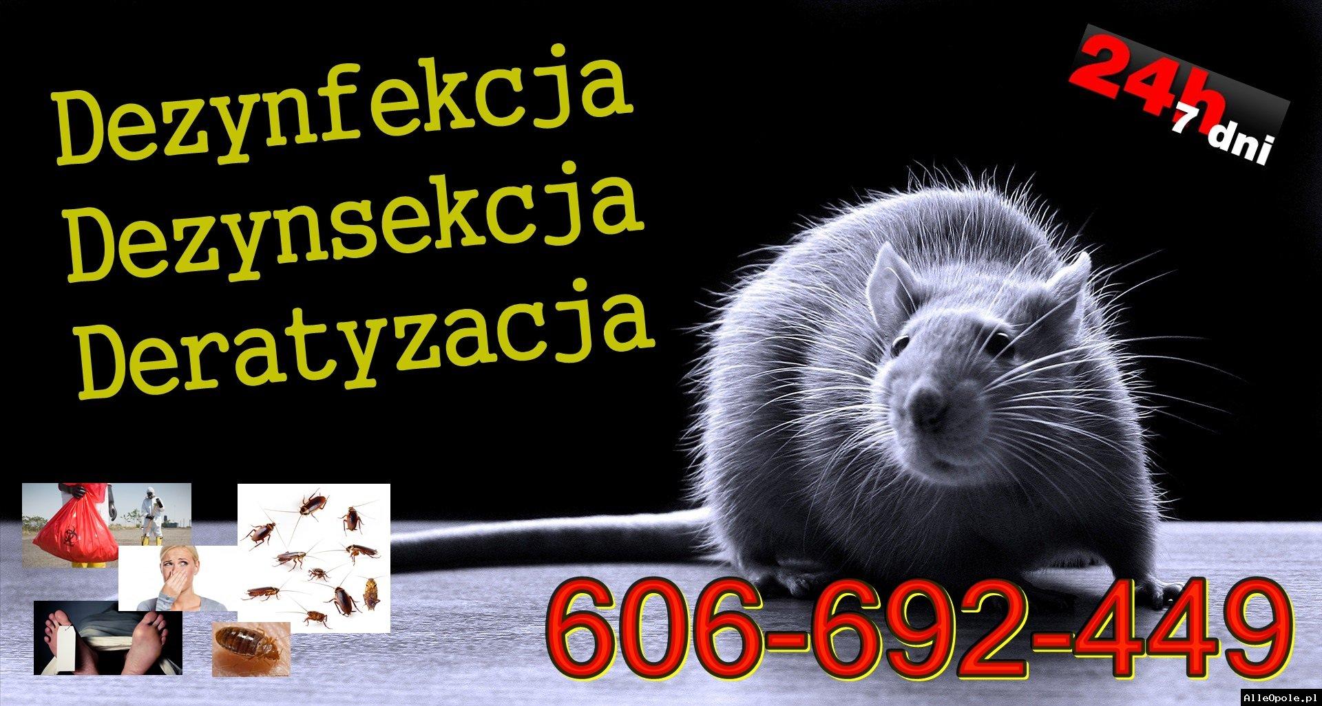 DEZYNFEKCJA DEZYNSEKCJA DERATYZACJA 606-692-449 opolskie, śląskie