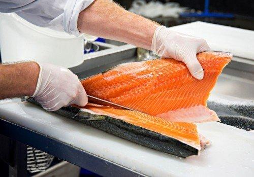 Filetowanie ryb - PRACA W BELGII- osoby z doświadczeniem