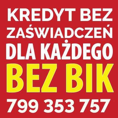 Kredyt przez Internet do 100 000 zł