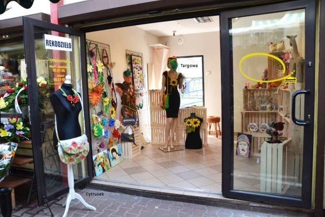 Lokal handlowy w Centrum Opola z dużą witryną