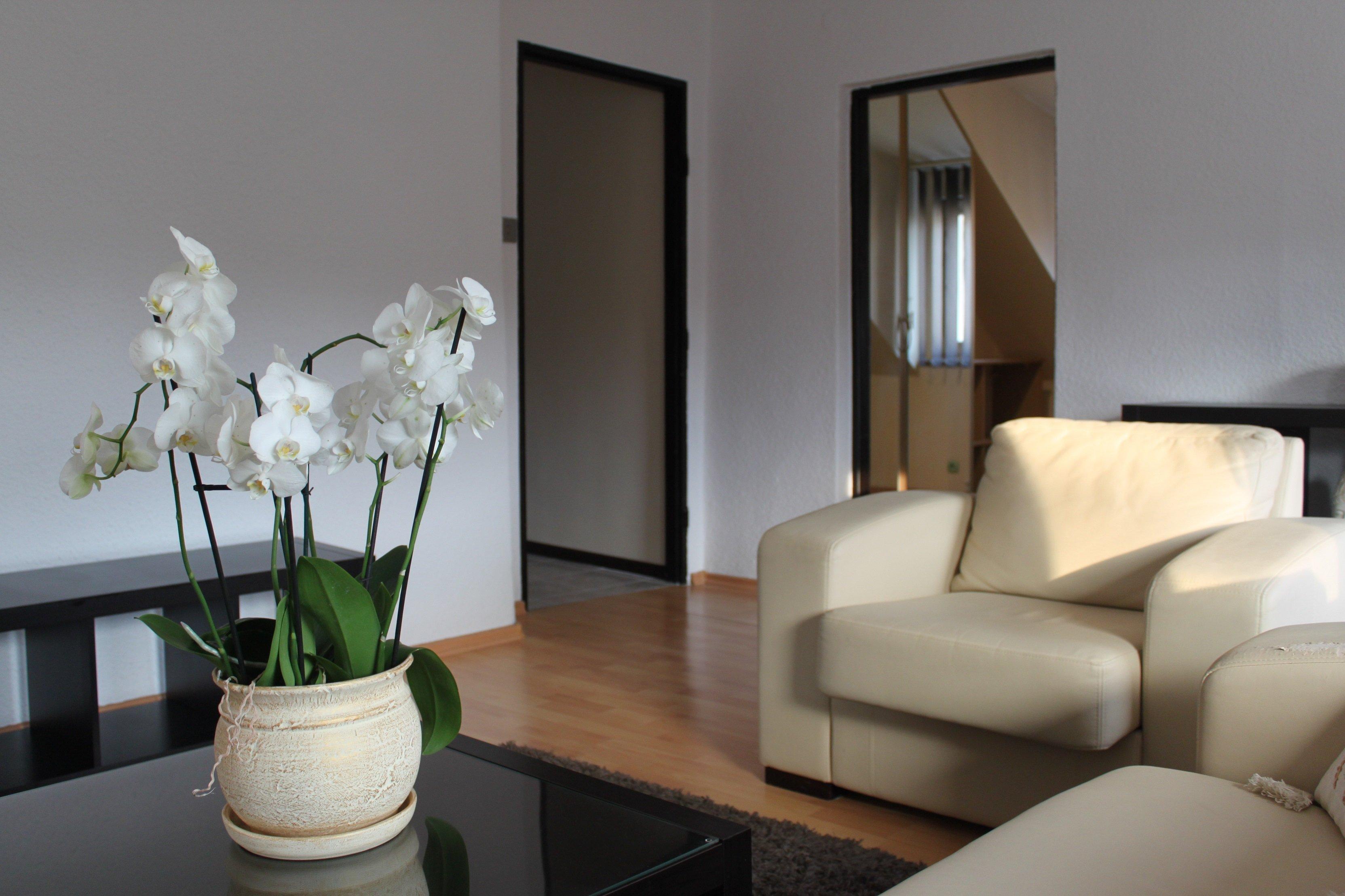 Mieszkanie, 53 m2, Opole - Centrum