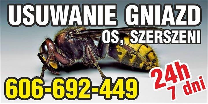 OSY SZERSZENIE - usuwanie likwidacja gniazd os szerszeni 606-692-449