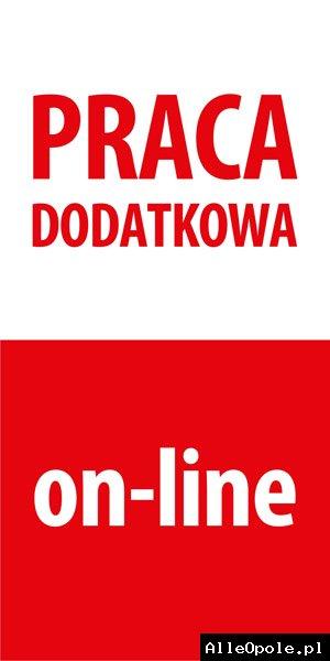 PRACA DODATKOWA W DOMU, INTERNET - 2 000 - 5 000 ZŁ