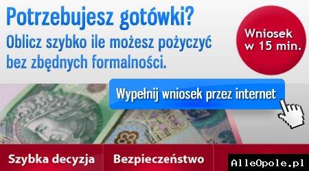 Pożyczki Online, działamy 24h na Dobę nie sprawdzamy baz BIK KRD ERIF