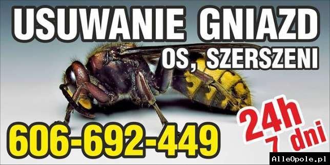 SZERSZENIE OSY - usuwanie gniazd os szerszeni 606-692-449