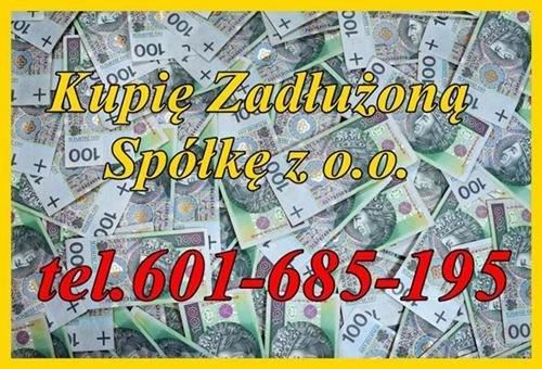 Skup Spółek z Długami z o.o. S.A. GMbH i inne