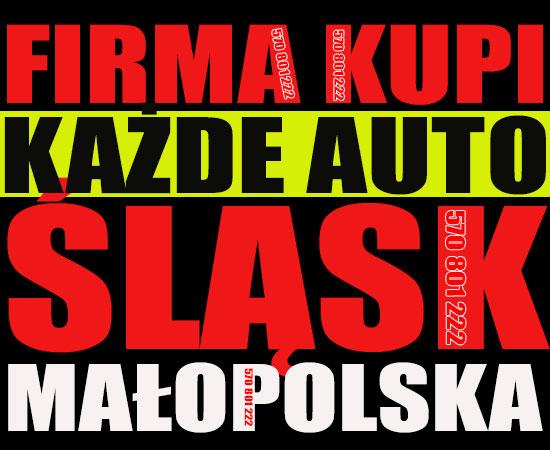Skup aut powypadkowych Bielsko-Biała Katowice, Skup samochodów Częstochowa ,Złomowanie aut  Sosnowiec, Auto części  Gliwice ,Skup katalizatorów Zabrze
