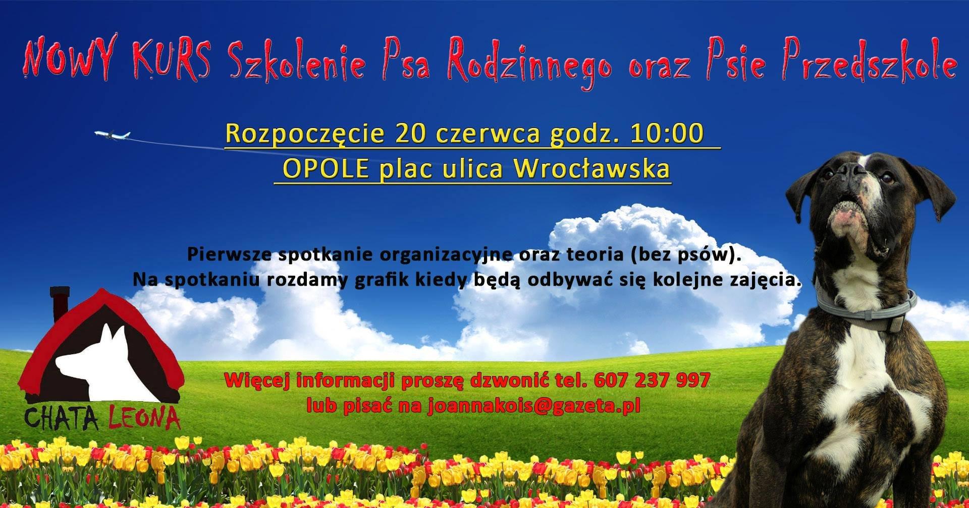 Szkolenie psów Opole