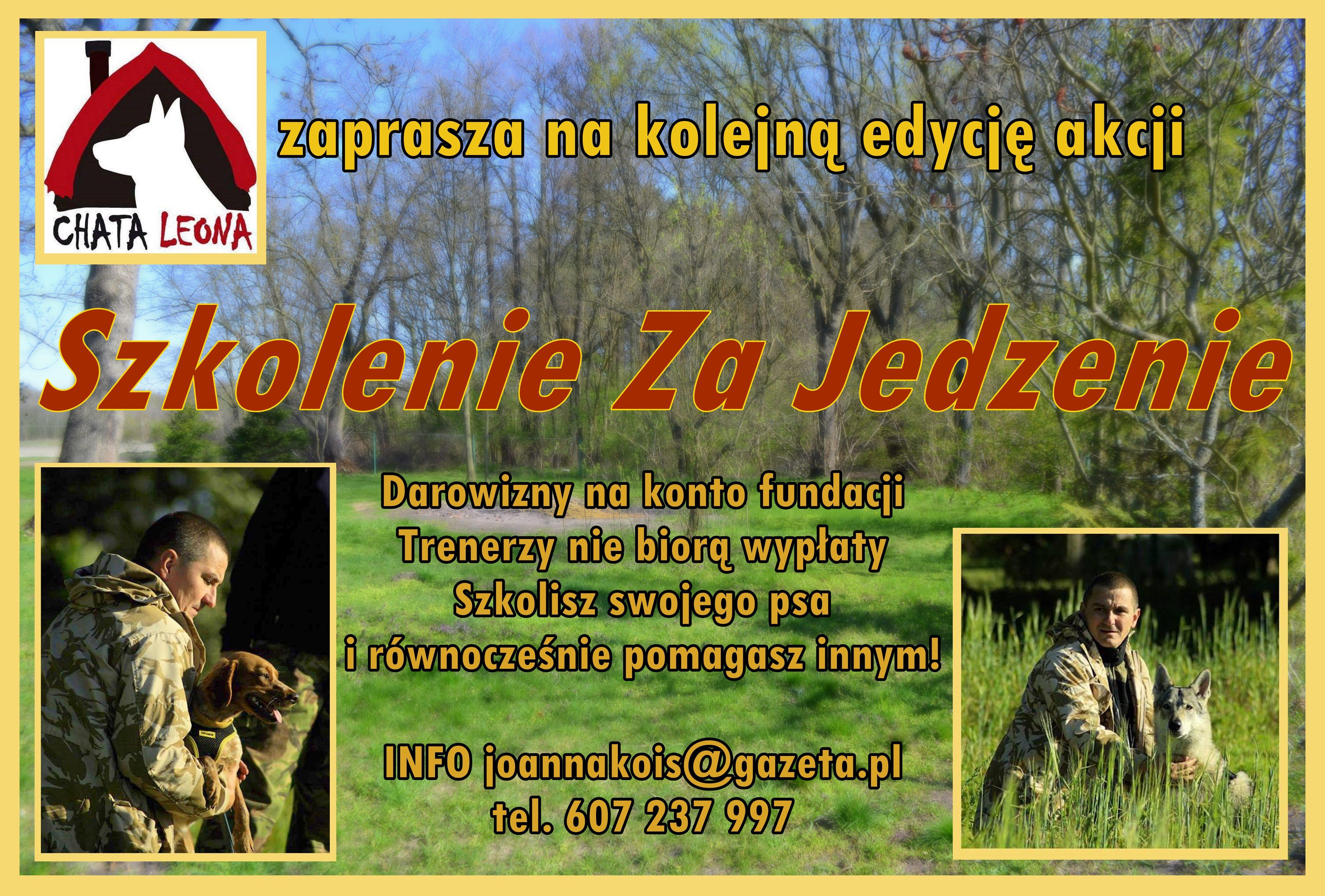 Szkolenie psów w Opolu