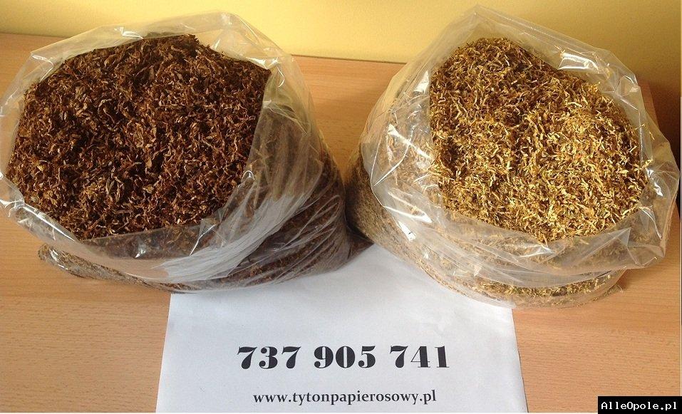 Tani Tytoń szybka dostawa ! Tyton 79 zł 1 kg! najtaniej najlepiej tani tytoń! tytoń tani najlepszy tytoń