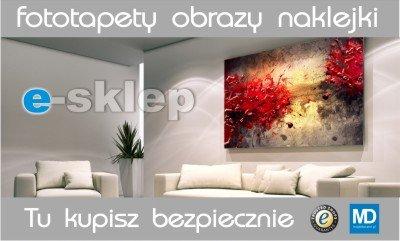 Tapety, Fototapety, Plakaty, Naklejki na Meble, Obrazy