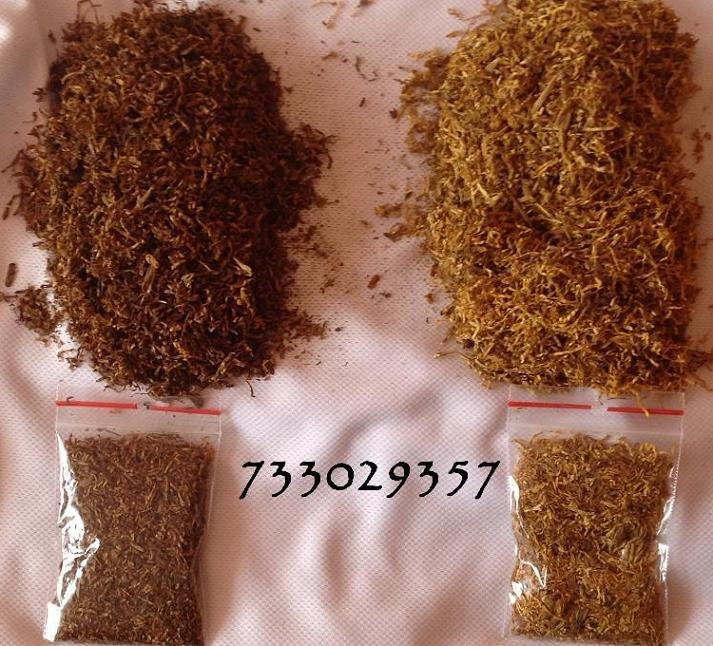 Tytoń Dla Ciebie Brak Szkodliwych Dodatków Urzekający Zapach Piękny Wygląd Tyton 1 KG Tani Firma