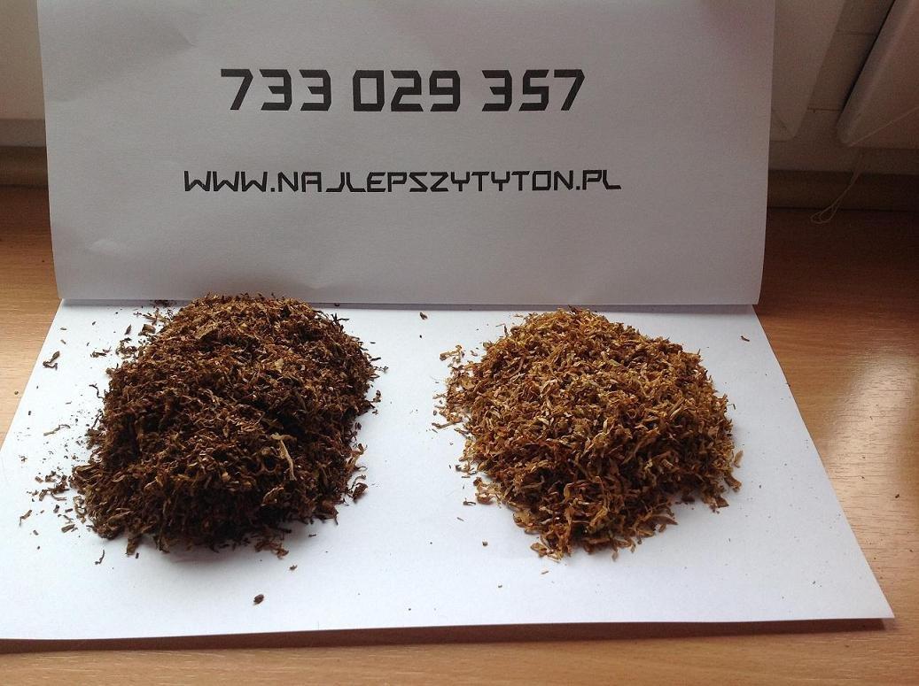 Tytoń Idealny, tylko z nami, tylko teraz! 85 zł Tyton 1 Klasa