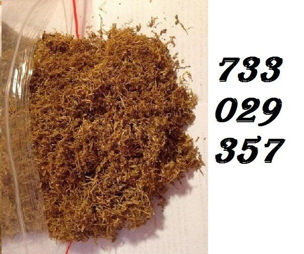Tyton, Tani tytoń, Idealna jakość palenia, 733-O29-357, 85 zl