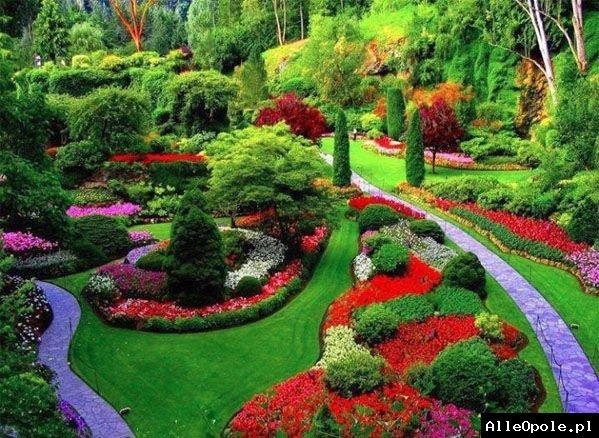 Usługi ogrodnicze oraz demontażowo/rozbiórkowe
