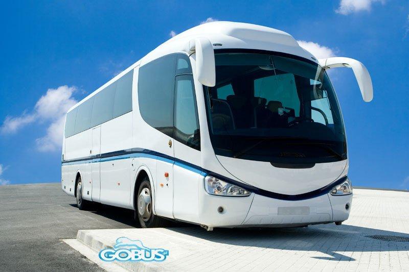 Wynajem busów Opole autokarów Krapkowice wesele wycieczki przewozy osobowe Kędzierzyn Koźle z kierowcą tanio cennik