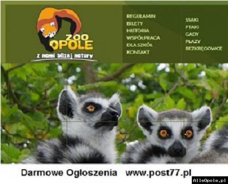 Zoo Opole