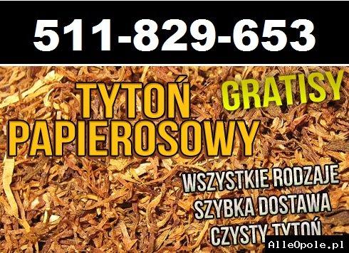 Świetny tytoń papierosowy w atrakcyjnej cenie tylko 65zł za kilogram wysyłany na całą Polskę.