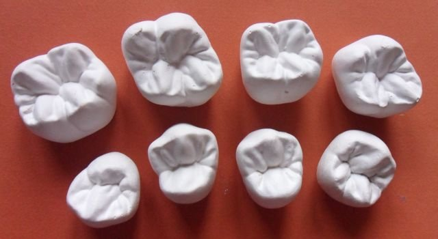 nauka bezpłatna technik dentystyczny