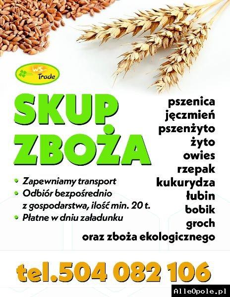 skup zboża, pszenicy, pszenżyta, owsa, jęczmienia,